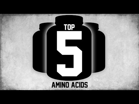 Top 5 Best Amino Acids Supplements 2016 First Half | MassiveJoes.com | Intra-Workout Acid