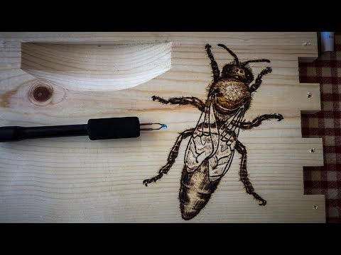 How to draw a Queen Honey Bee with Pyrography Art, Wood Burning BeeHive