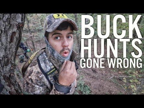 Bowhunting Pre Rut - Buck Hunts Gone Wrong S8 #46