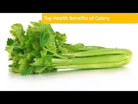 Top Health Benefits of Celery