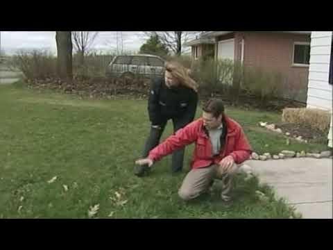 Moisture Control Outside the House