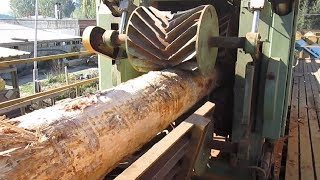 Amazing Automatic Wood Sawmill Machines Modern Technology - EXTREME Fast Wood Cutting Machine