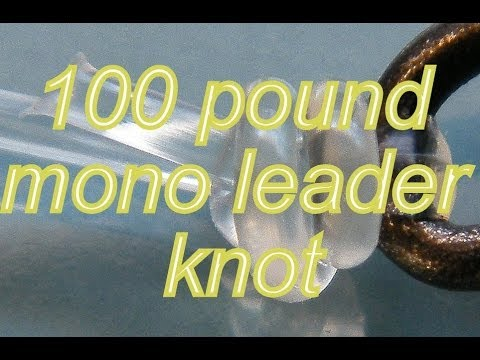 Best fishing knot for heavy mono leaders