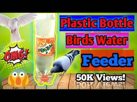 Make your own bird water feeder.