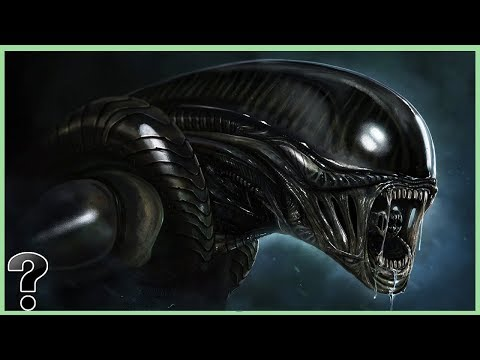 What If Xenomorphs Were Real?