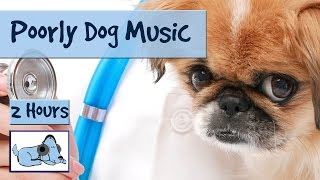 2 Hours Of Music For Ill Or Stressed Dogs Musical Therapy For Pets Po