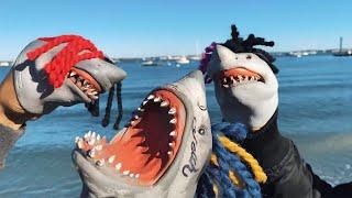 Shark Puppet - Buckets ft. Suigeneris & DC The Don (Official Music Video)