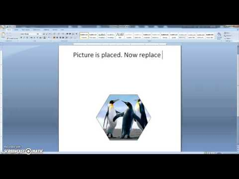 MS Word Tutorial - How to insert a picture into a shape