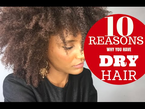 10 REASONS WHY YOU HAVE DRY HAIR (natural afro kinky)