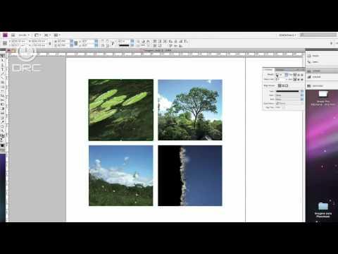 Photobook 02 - Layout e Grid no Indesign - DRC Treinamentos