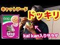 【ドッキリ】KENKENにキャットフード食べさせてみた【食レポ】