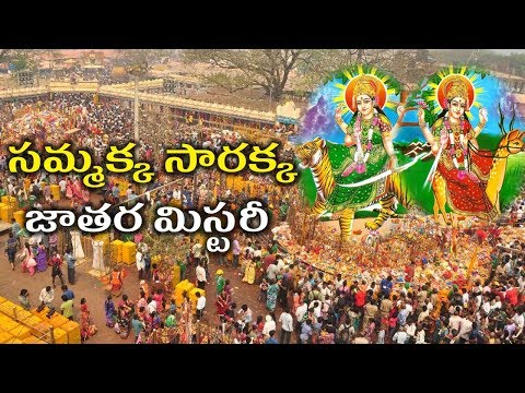 Amazing Facts About Sammakka Sarakka in Telugu