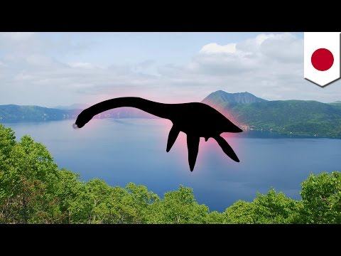 Loch Ness Lake Monsters: Research team discovered tracks of unidentified lake animal - TomoNews