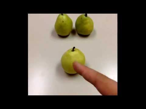 How to slice pears.