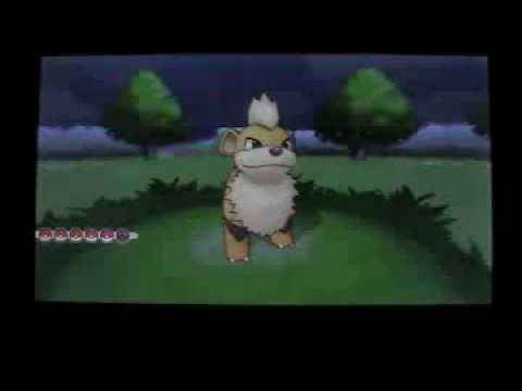 [First on YT] UNBELIEVEABLE! Shiny Growlithe in Friend Safari on X! (10-19-13)