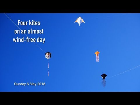 Four kites on an almost wind-free day