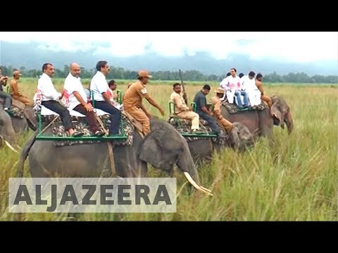 India: Flood-struck Kaziranga national park reopens