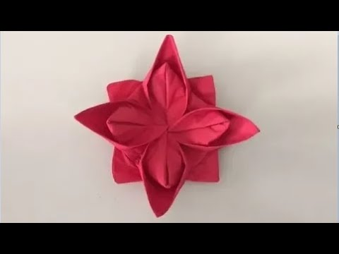 Napkin Folding -  HowTo Video #6