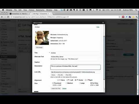 Wordpress Tip No. 1 (Generate Text Widget HTML with Visual Tab on a Page) - iPhone.m4v