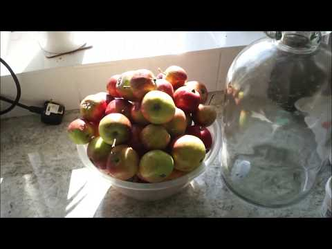 Making 1 Gallon of Organic Apple Cider Vinegar at Home!