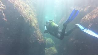 Dive In Cascais