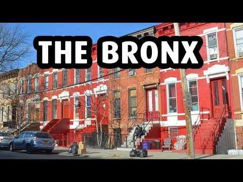 A Trip to The Bronx, New York City