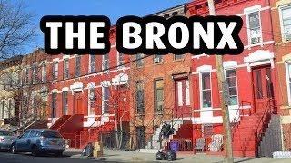 A Trip to The Bronx, New York City