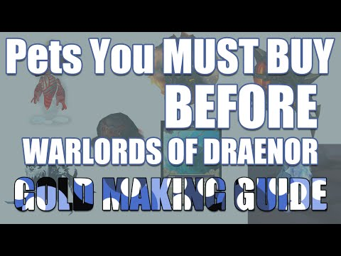 WoW Pets You MUST BUY BEFORE Warlords of Draenor (Patch 6.0.2 Gold Making Guide)