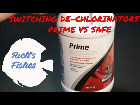 why i switched dechlorinators; seachem prime vs. safe; do you use water conditioner for tap water?