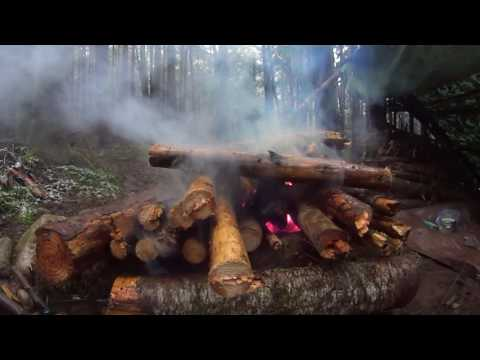 Mountain tarp shelter visit and how to build a wet wood fire.