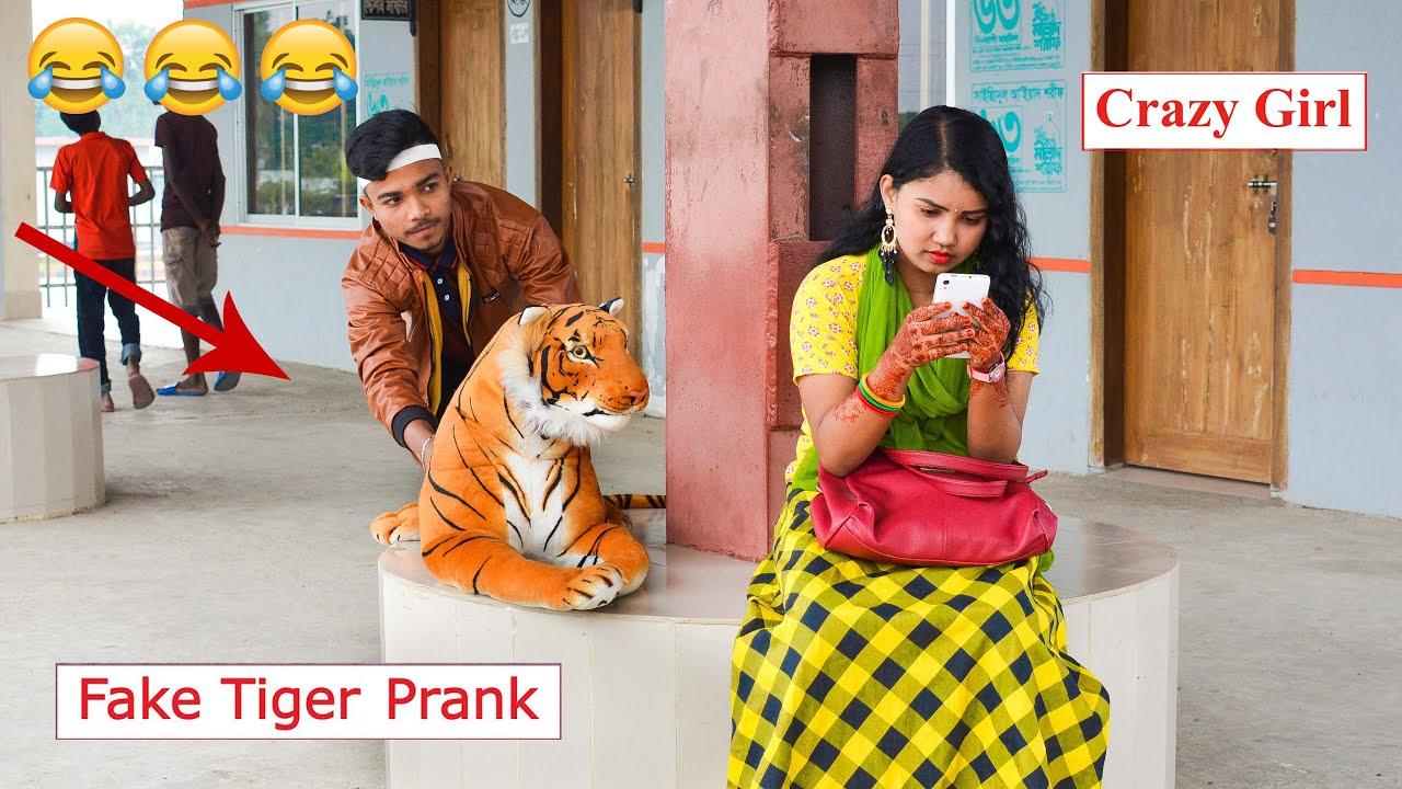 Fake Tiger Prank on Cute Girl - PART 8 | Fake Tiger vs Man Prank Video | 4-Minute Fun