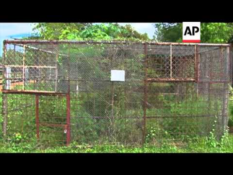 Animals in poor condition at regional zoo