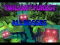 Minecraft: TWILIGHT FOREST Mod All bosses !! Time lapse