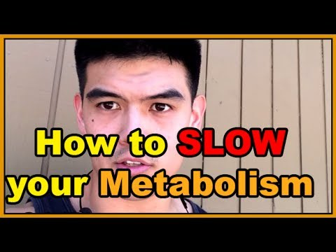 Metabolism Oversimplified : How to Slow it Down