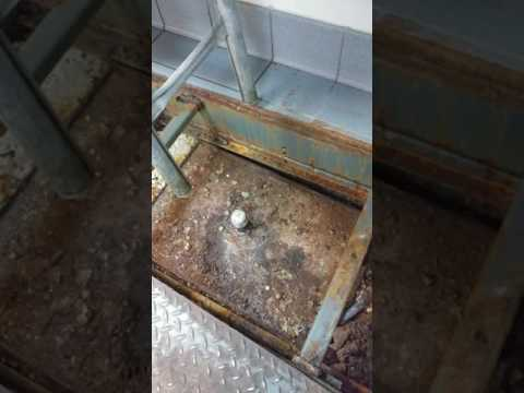 Manassas mall grease trap removal and replace
