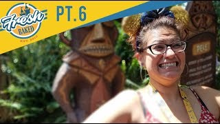 Tiki Room Update | More than just a minor refurb?  | 07/28/18 pt 6