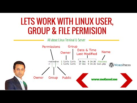How to change ownership of any file & directory?   Linux Ubuntu