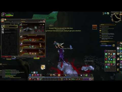 How to get Ashmaw Cub battle pet - World of Warcraft