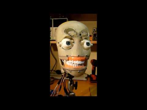 Animatronic head using 3D printed parts