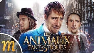 LES ANIMAUX BORDÉLIQUES DE NORBERT !