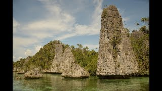 Yapap - Misool, Raja Ampat, Papua, Indonesia