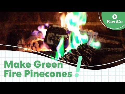 Make Green Fire Pinecones