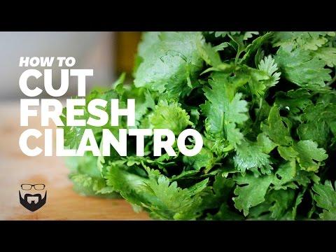 How to Cut Cilantro