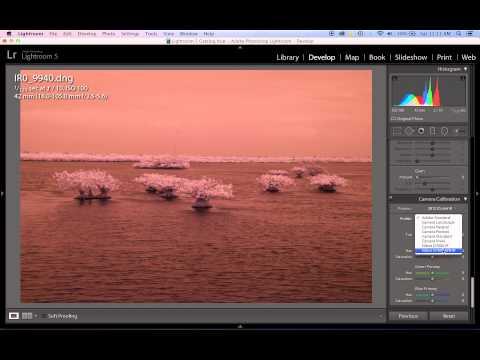 Creating An Adobe Camera RAW Infrared White Balance Profile