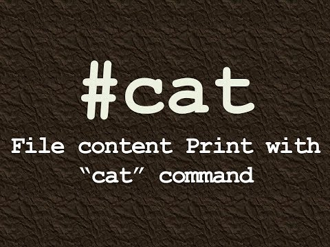 Cat Command For File Content Print in Linux/How to use Linux cat command