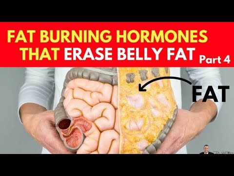 🍽️ Clinically Proven: Increase Fat Burning Hormones To Erase Belly Fat - Part 4
