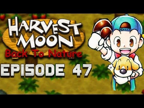 Normal Spring Routine | Harvest Moon | Back to Nature EP.47