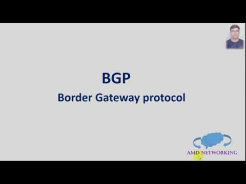 BGP Packet Format and BGP state's