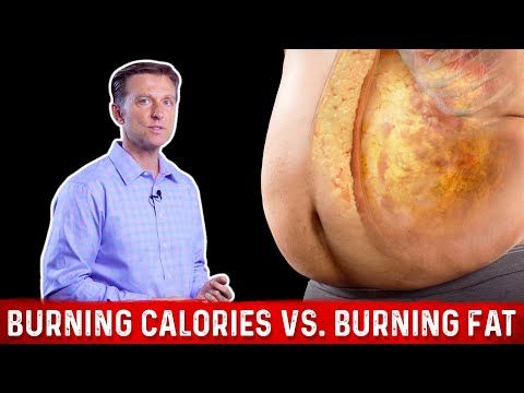 Burning Calories vs. Burning FAT Calories?