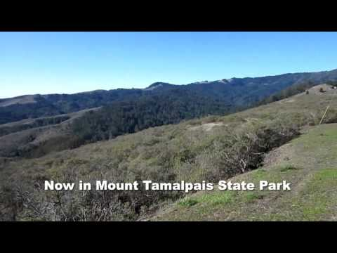 A Walk in Muir Woods and Marin Headlands